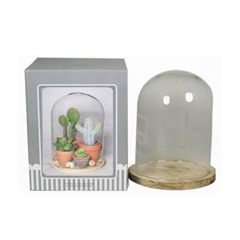 D CLOCHE VERRE D23 H37 SOCLE NATUREL
